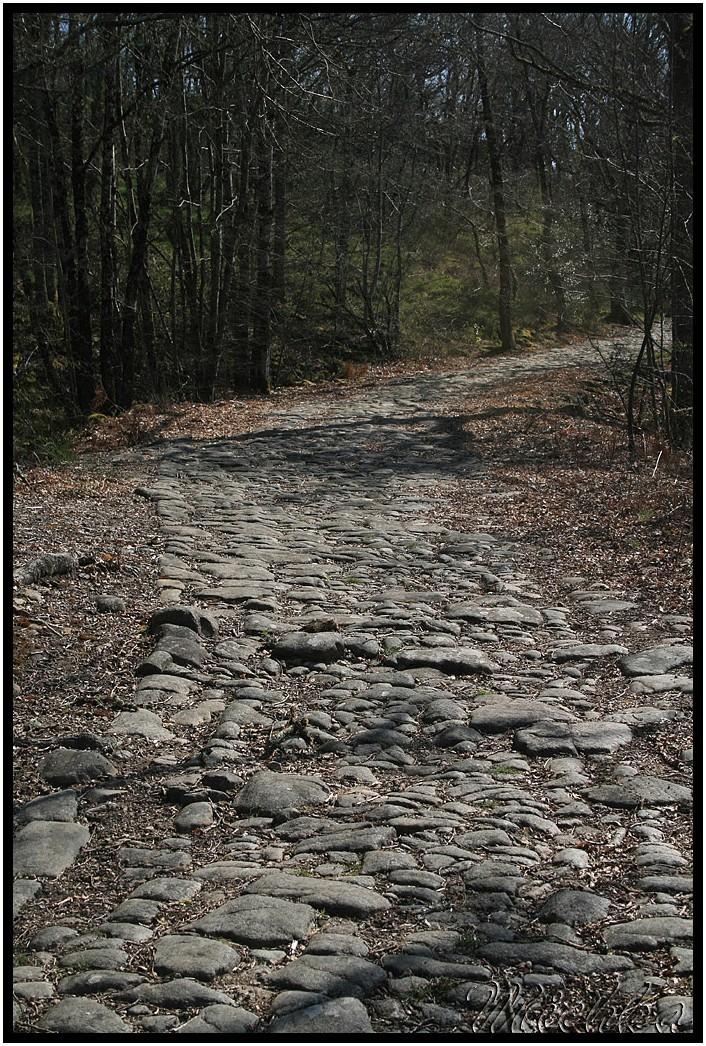 Michka : Saint-Auvent, voie romaine.