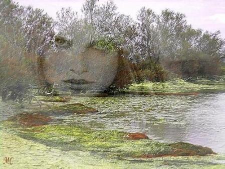 L'ondine d'Amaneda