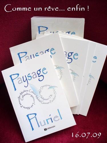 Paysage_pluriel_2009