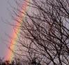 Marie arbre-en-ciel
