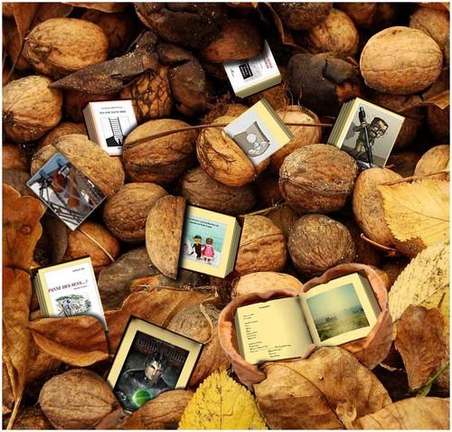 100116 L'Ottomane Fruits-quichottinier