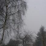 100210_neige_1