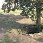 100303_Jeanne-Fadosi_Pontoise
