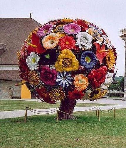 100306_Patriarch_arbre-fleur.jpg