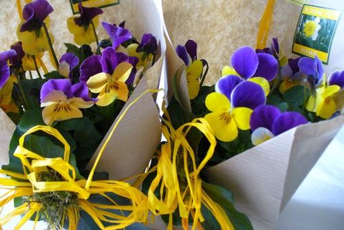 Des fleurs pour Mamie, 7 mars 2010