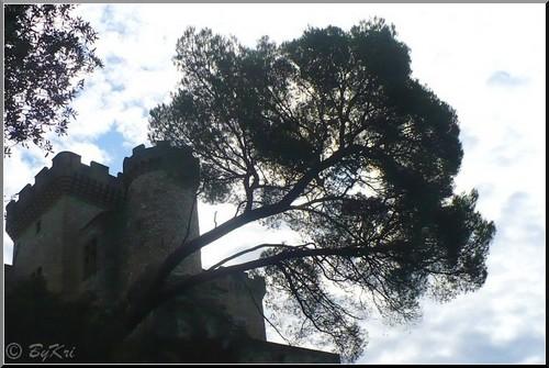 Kri, Château de la barben, contre-jour