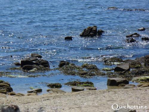 Quichottine, Plage en mai