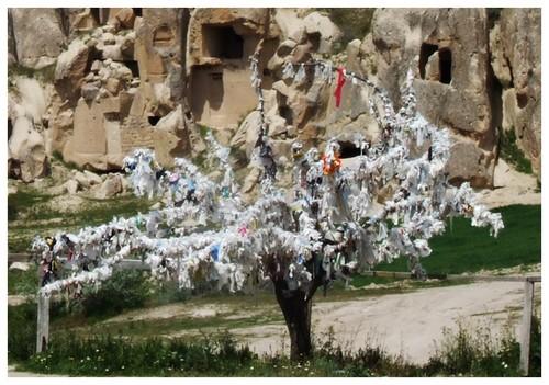 L'arbre à souhaits de Clo