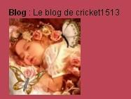 100602_Cricket_Avatar_blog.jpg