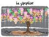 100730 Severine-Dalla Glycytise