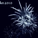 100714_Fleurs-de-feu