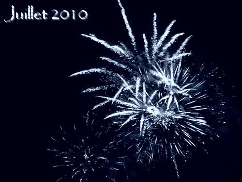 100714_Fleurs-de-feu.jpg