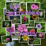 Montage de Quichottine, les Fleurs de Giverny