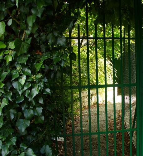 Giverny, Photo de Quichottine