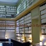 101111_Bibliotheque-factice