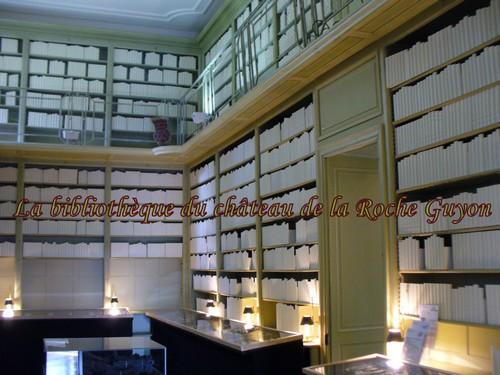101111_Bibliotheque-factice.jpg
