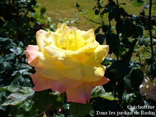 110518_Chez_Rodin_2.jpg