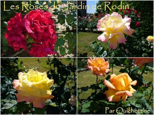 110519_Rodin_Roses.jpg