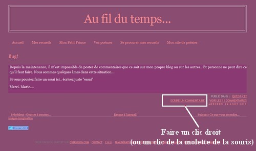 110829_Commentaires1.jpg