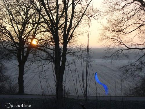 110512 Pause-entre-lignes du Lutin-bleu
