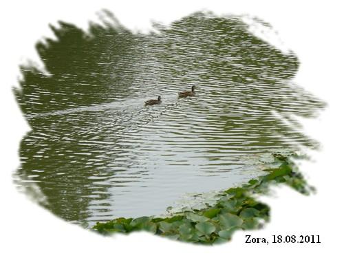 110818_Versailles_8.jpg
