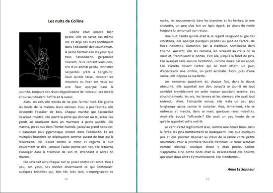 http://quichottine.fr/wp-content/uploads/2011/10/111018_Anne_Le_Sonneur_0.jpg
