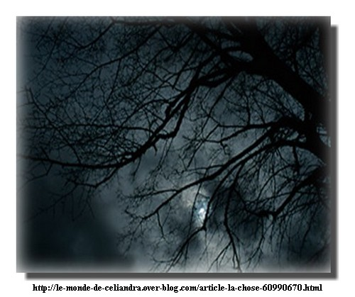 101115_Celiandra.jpg