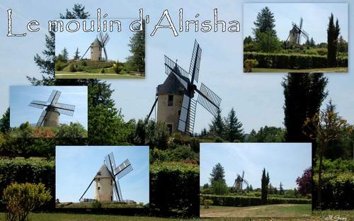 110618_Alrisha_1.jpg