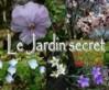 101026_Jardin-secret.jpg