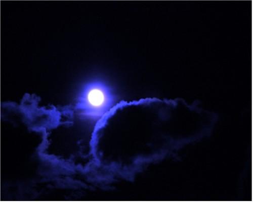 Lune_et_rat.jpg