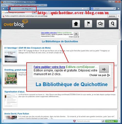 130311_Quichottine_pubOB.jpg