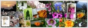 """Bannière des """"Souvenirs du jardin secret"""", sur blogspot"""