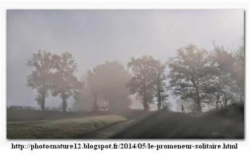 """""""Le promeneur solitaire"""" de Jackie Fourmiès"""