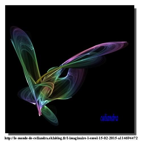 150215_Celiandra_envol