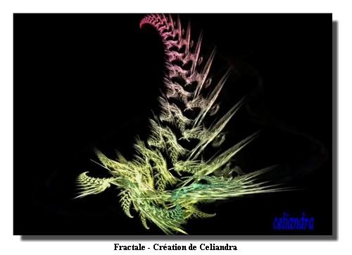 150219_Celiandra_fractal3