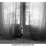 141219_Beatrix_Tanguy-Richard_2
