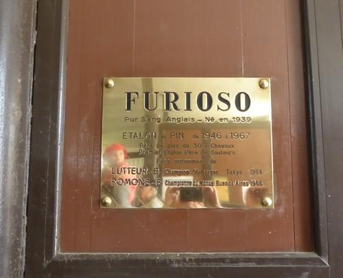 160505_Haras du pin_Furioso