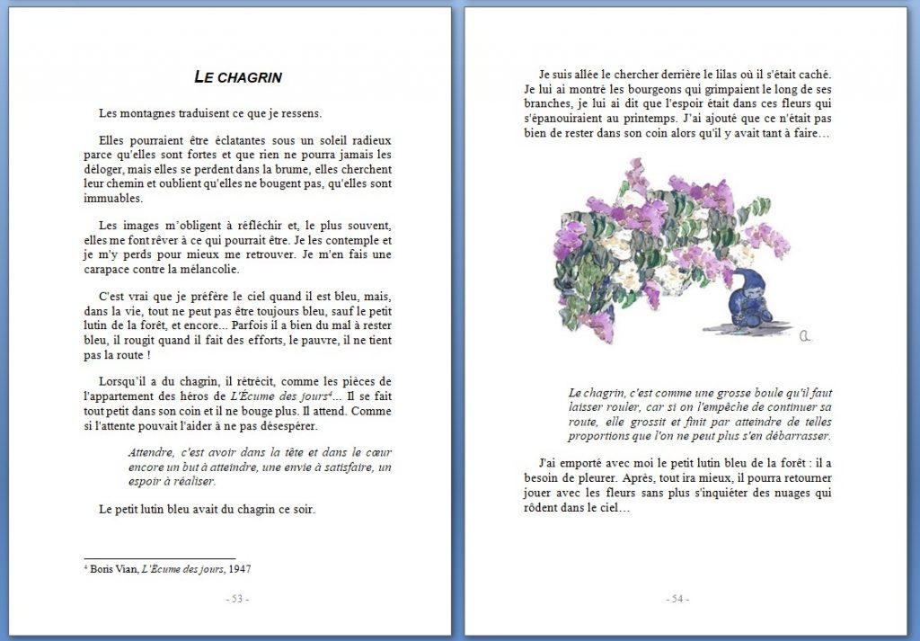 171007_Quichottine_Paraboles_Le Chagrin